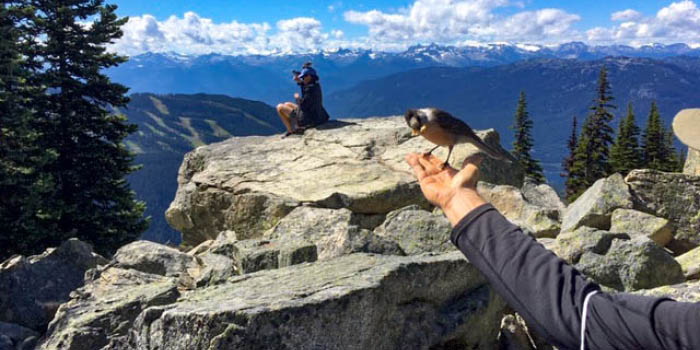 70 decades of hikes - eager birds and great views