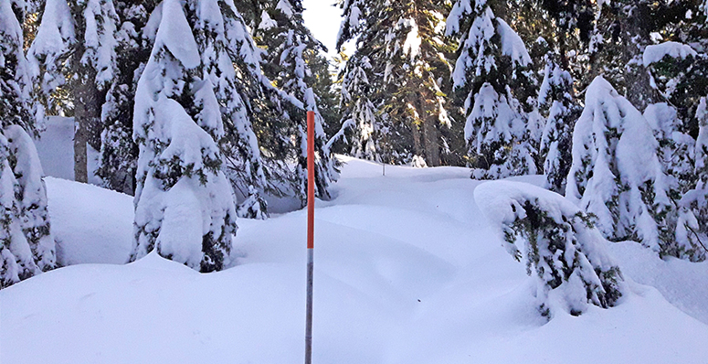 Improved backcountry winter access at Mt. Seymour