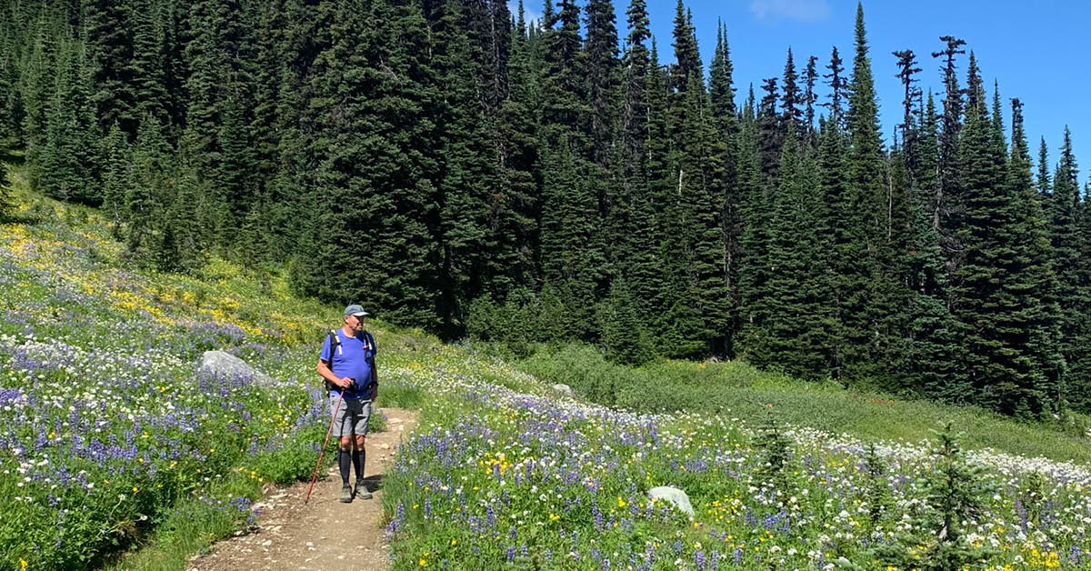 Project Update: Singing Pass Trail