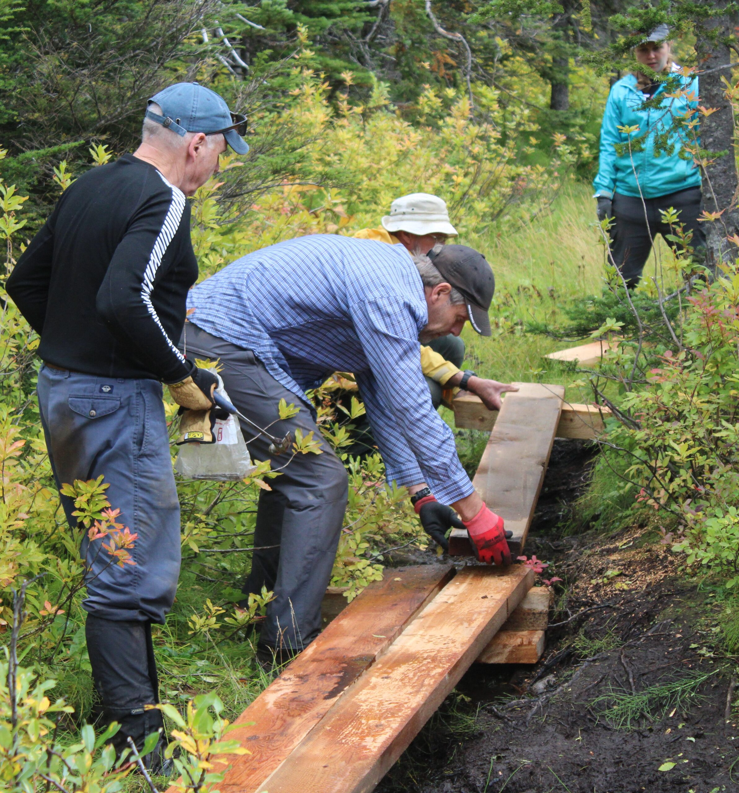 Caledonia Ramblers Install Plankway Along Popular Central Interior Trail